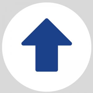 Flecha Azul  Circular- Rutas